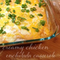 creamy chicken enchilada casserole | my skinny sweet tooth